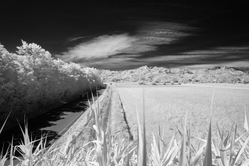 Infrared with X Pro 1