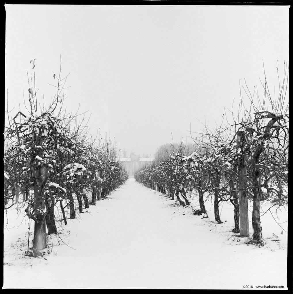 Caserma Snow Acros Film
