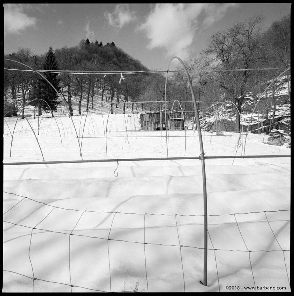 Hasselblad 903 SWC - 1/125 f11 - Fujifilm Acros 100